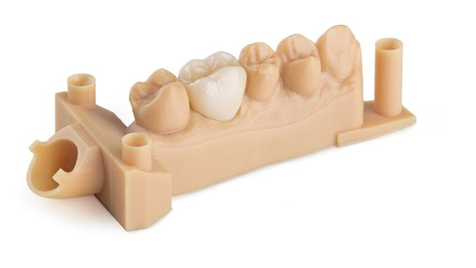dental-model-resin